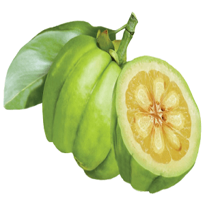 Garcinia cambogia 1000 mg side effects picture 5